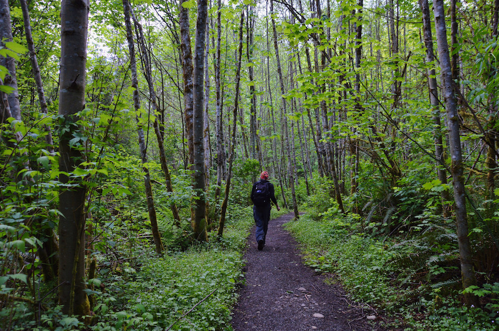 Top 10 Hikes in Washington State
