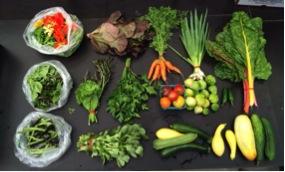 uw farm produce