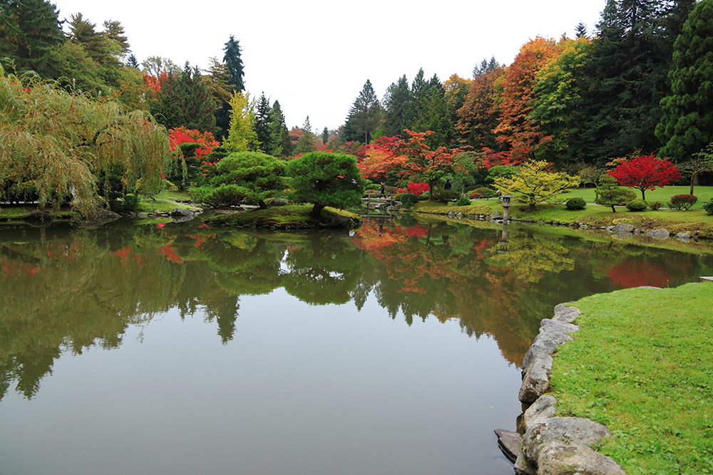 JapaneseParkGarden20141018 (25)
