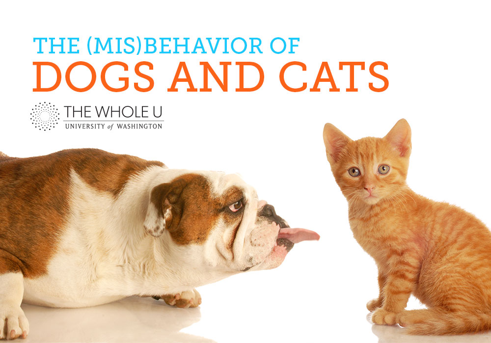 uw animal behavior