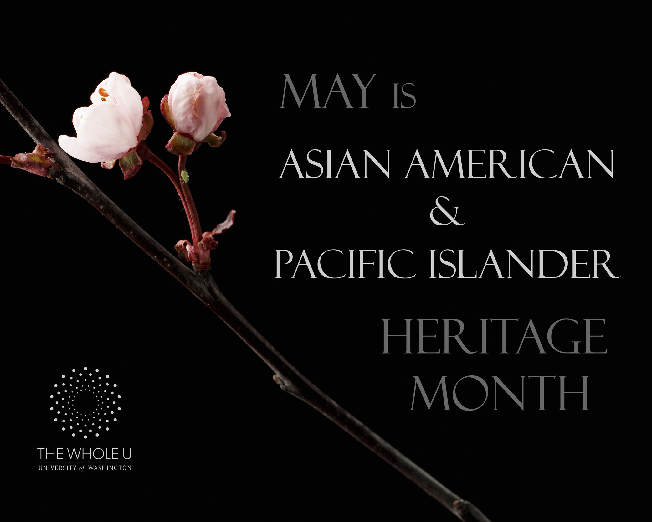 Asian pacific islanders month