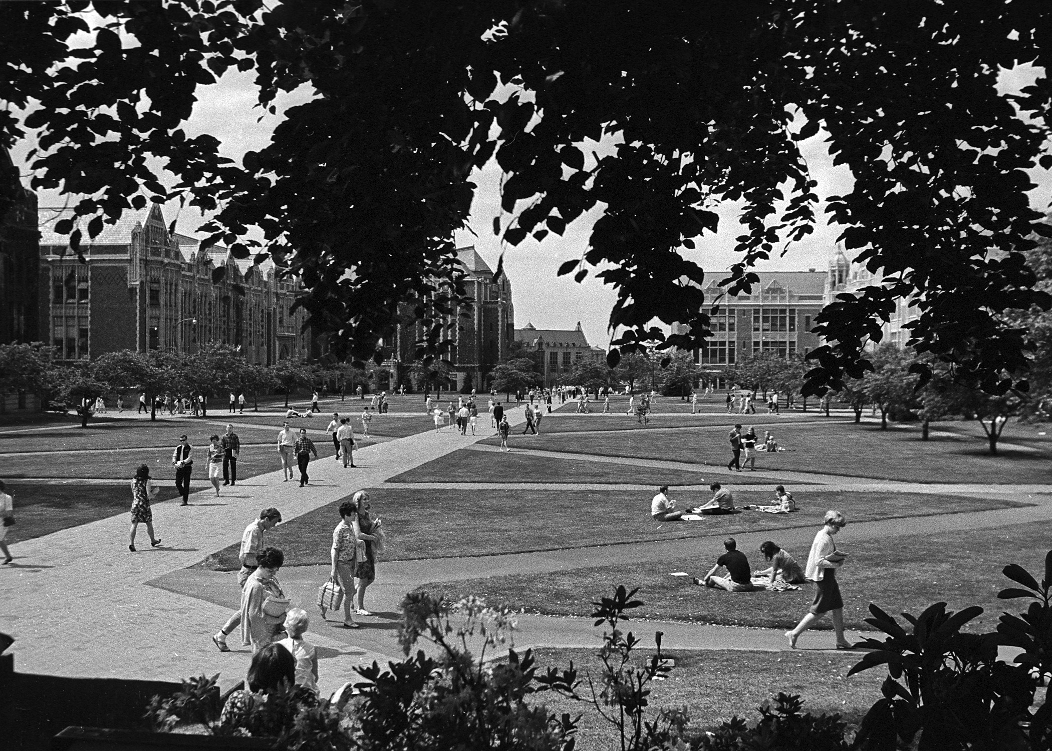 Quad with students outside 05/1967