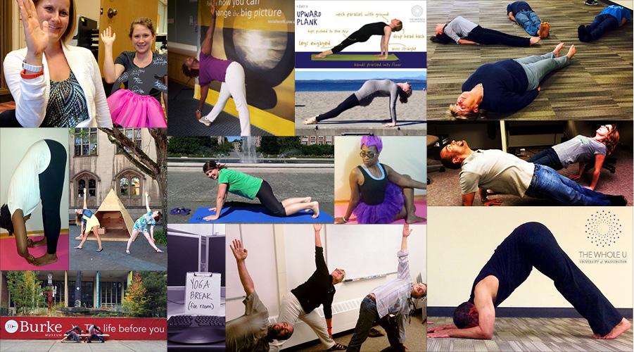 Yoga Collage Week 4