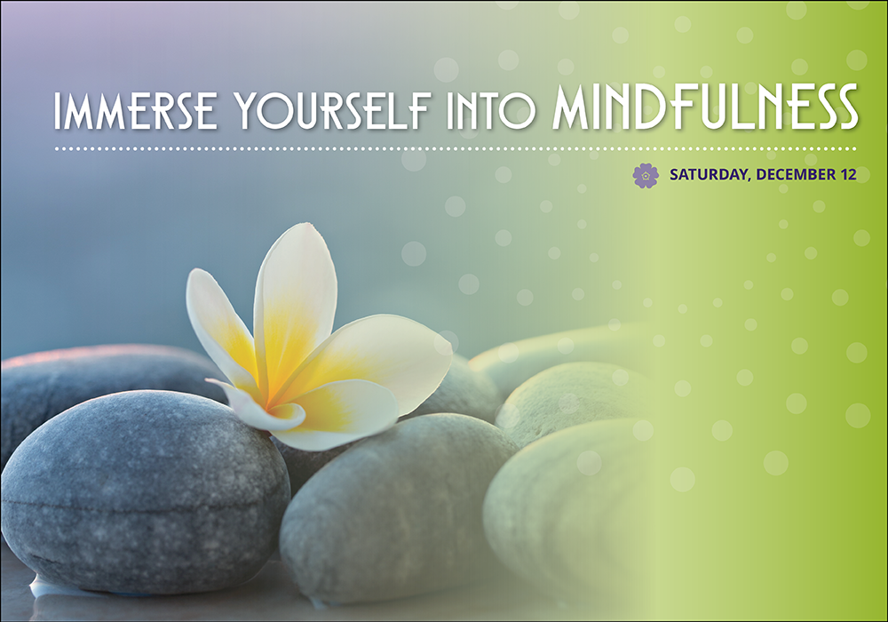 seattle mindfulness retreat