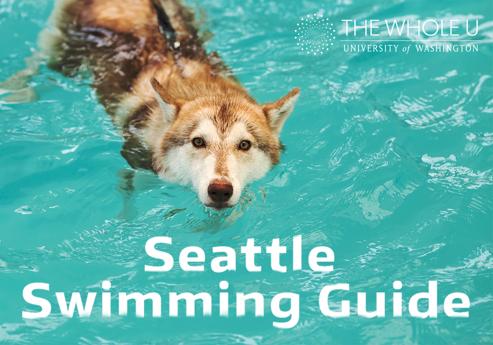 Where to swim in Seattle