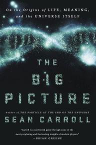 Sean Carroll-The Big Picture