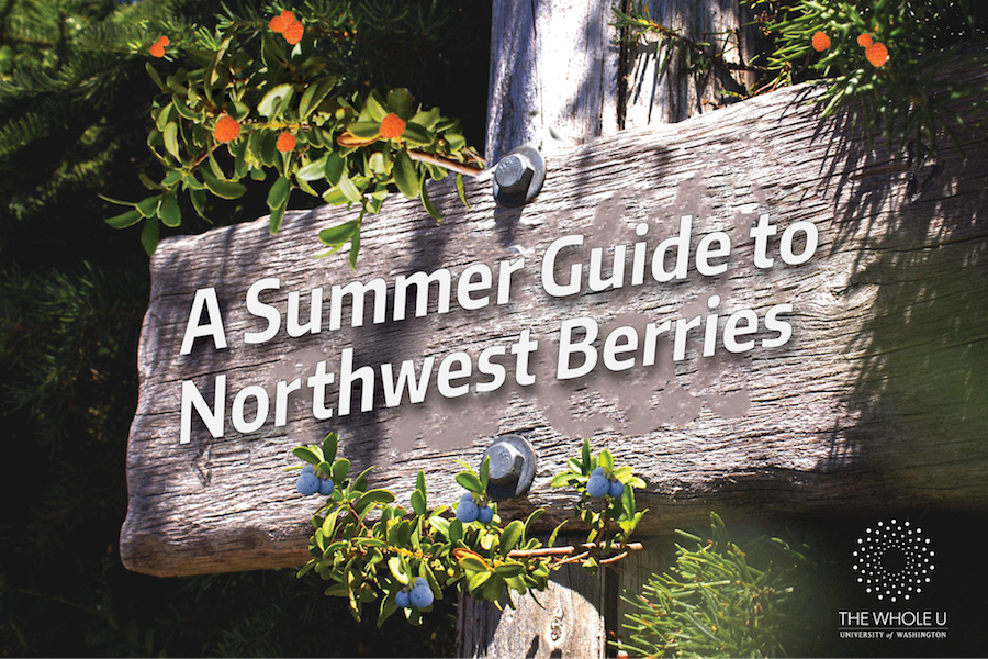 A Quick and Juicy Guide to Berries of the Northwest | The Whole U