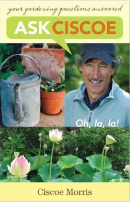From The Moment Ciscoe Morris Uprooted Himself From His Native Wisconsin  And Planted Himself In Seattle In The Early 70s, The Gardening Scene In  Seattle Has ...