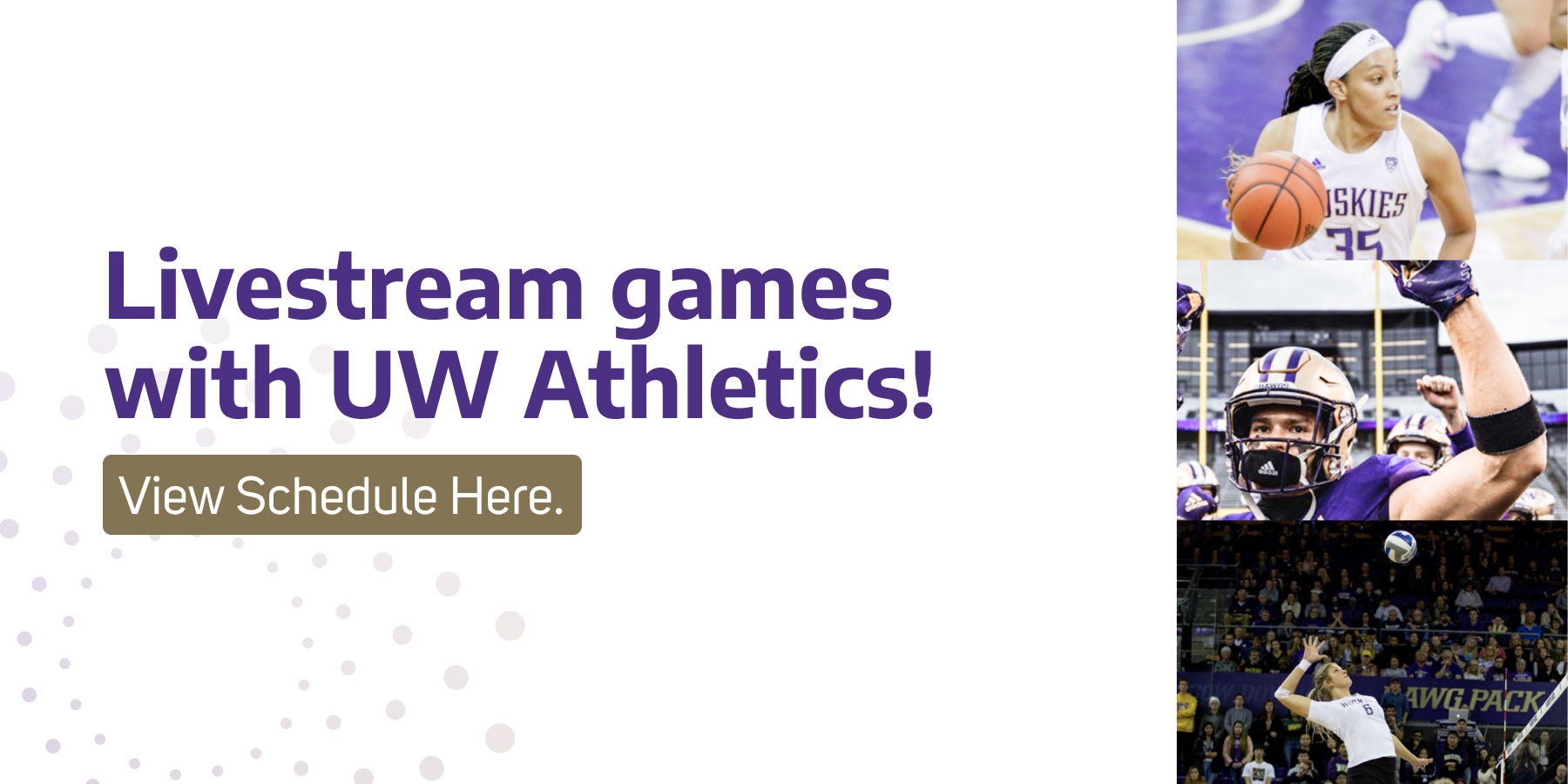 Join the Dawg Pack from home by tuning into Husky games live streamed from Pac-12! Check out this week's schedule!