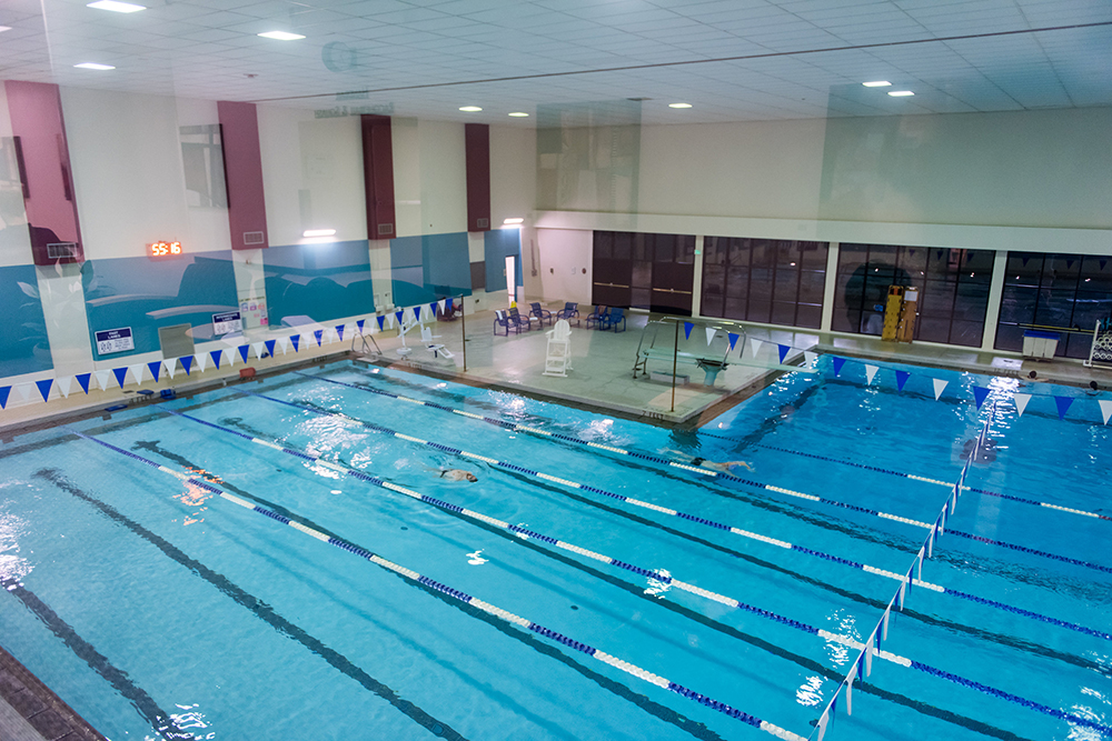 Where To Swim In Seattle The Whole U